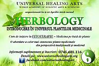 Herbology (nivel de bază) - Introducere în Universul Plantelor Medicinale