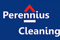 Cleaning Perennius