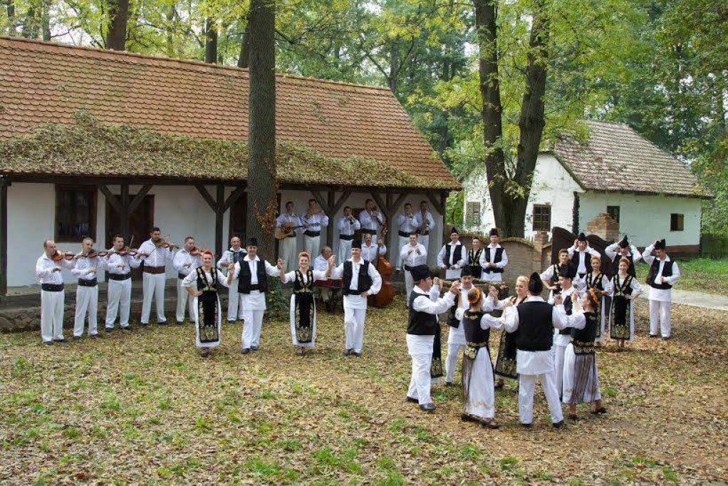Sezatoare la Muzeul Satului Banatean Timisoara