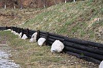 Cele mai bune tipuri de lemn pentru gardul casei tale