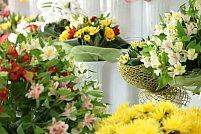 Inaugurarea proiectului ,,Depozit de Flori,, al Frorariei Casa Florilor din Timisoara