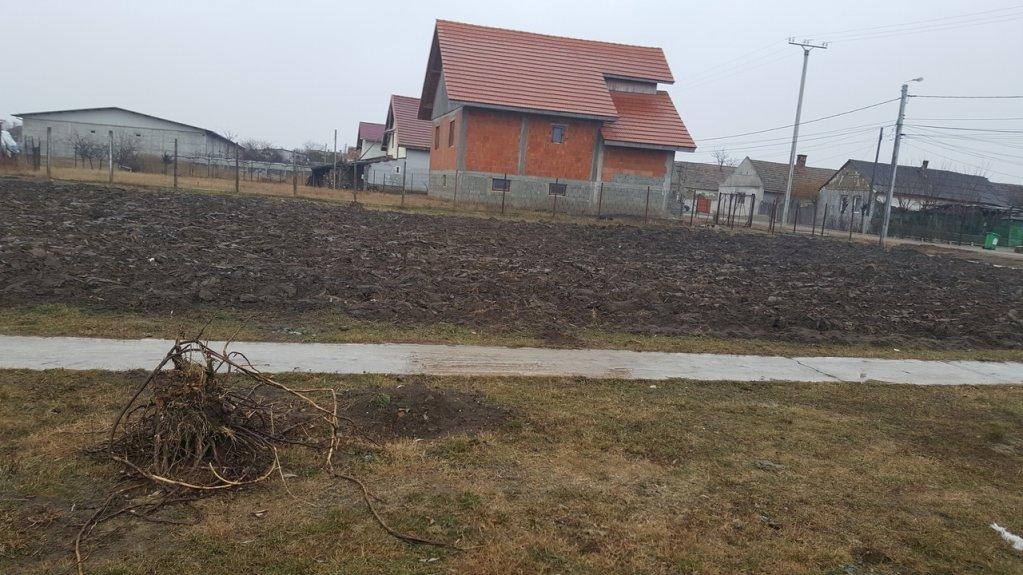 Proprietar, vand teren intravilan in Comuna Periam