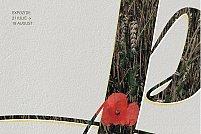 Peren -Expozitie de ierbare înrămate