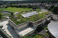 Acoperisul verde pentru terasa – inovatia care te va aduce mai aproape de natura