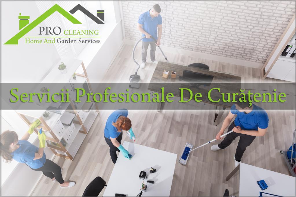 Servicii Curatenie Timisoara Pro Cleaning