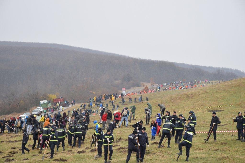 S-au plantat fapte bune pe dealul de la Cralovăț
