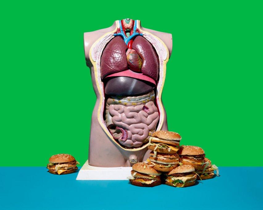 Conexiunea intestin - creier ar putea explica calea spre obezitate
