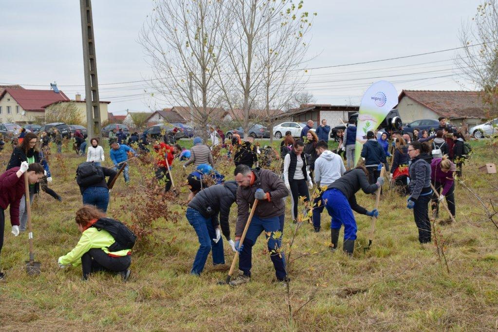 200 de voluntari la Sînmihaiu Român