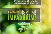 De Ziua Mondială a Pădurii timișorenii ies la plantat