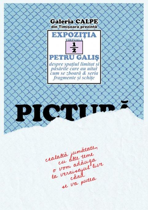 EXPOZIȚIE VIRTUALĂ DE PICTURĂ - PETRU GALIŞ @ GALERIA CALPE