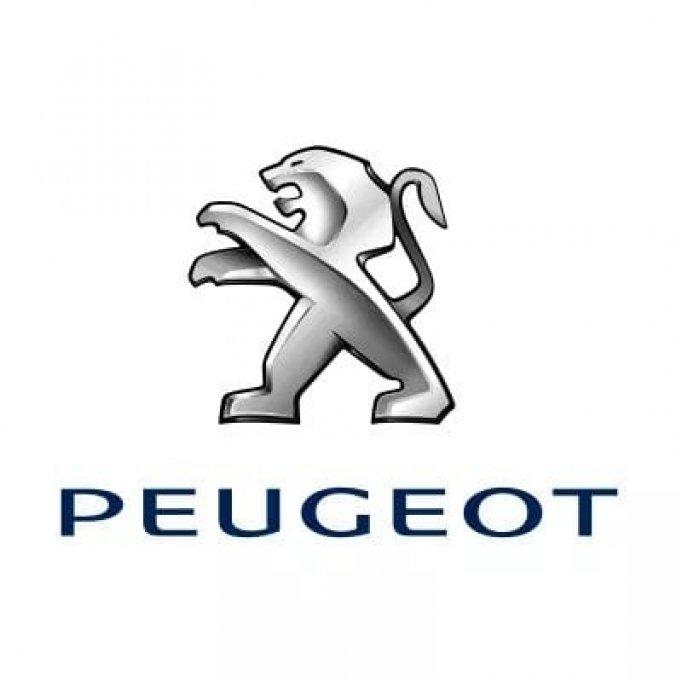 Mega Group - Peugeot