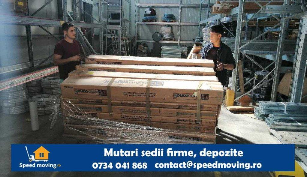 Speed Moving Timisoara