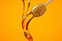 Vrei sa devii un bun apicultor? Iata cativa pasi esentiali pe care este recomandat sa ii parcurgi!