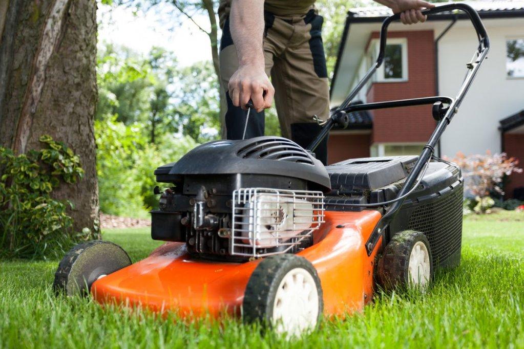 Masina de tuns iarba: electrica sau pe benzina? Afla cum sa faci cea mai buna alegere pentru gradina ta!