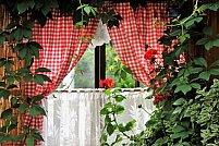Idei de design interior inspirate de natură