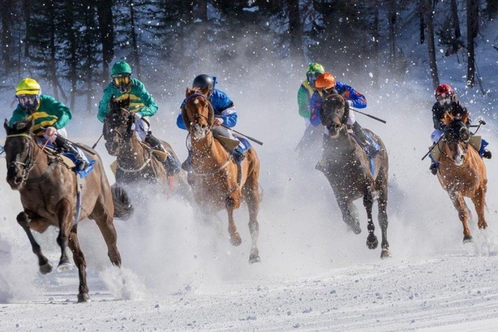 Topul celor mai urmărite curse de cai în 2021