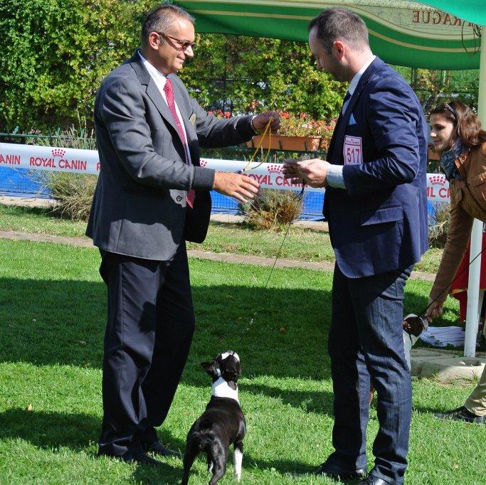 Cupa Transilvaniei - 28 Septembrie 2013
