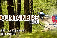 Mountain Bike Ineu