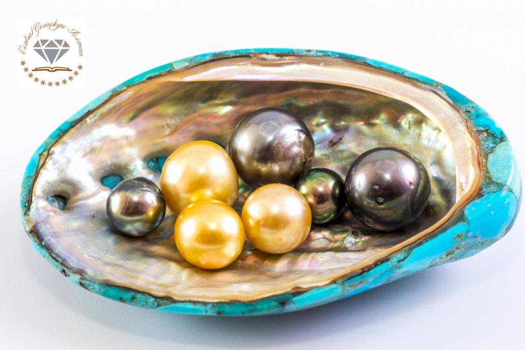 Evaluarea profesionala a perlelor