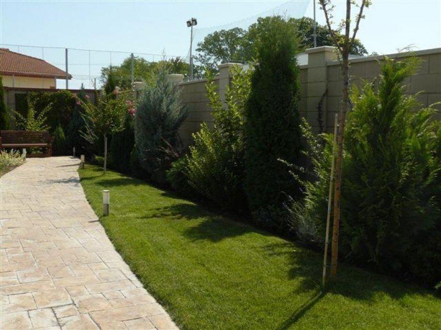 Gardenia Timisoara