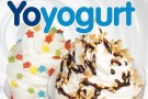 Frozen Yogurt Bucuresti