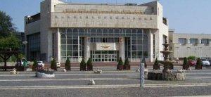 palatul national al copiilor bucuresti teatrul tineretului