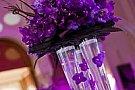 Floraria Iris - Aerogarii