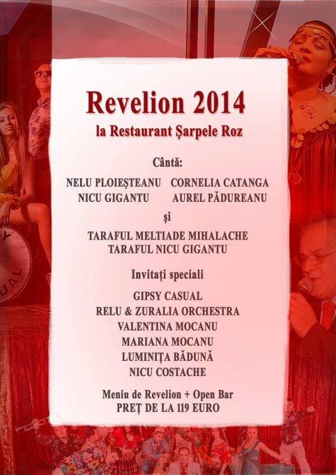 Patrecere Revelion 2014 la Sarpele Roz