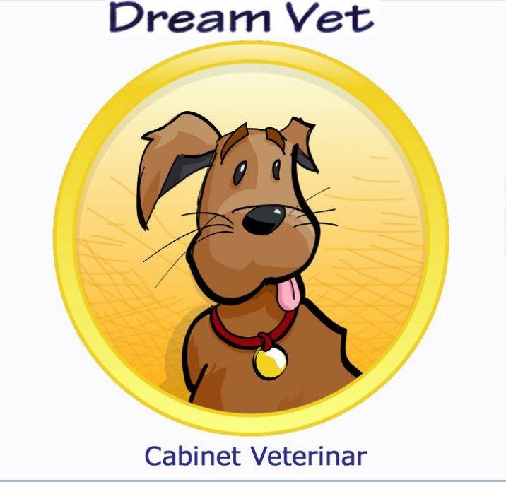 Dream Vet