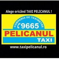 taxi pelicanul bucuresti