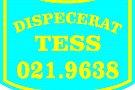 Tess Taxi