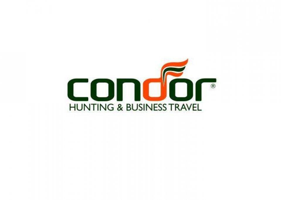 Condor Tour