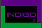 Indigo Neon