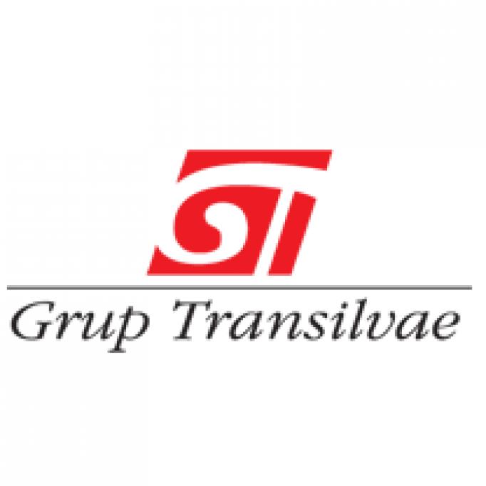 Grup Transilvae