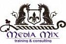 Media Mix Consulting