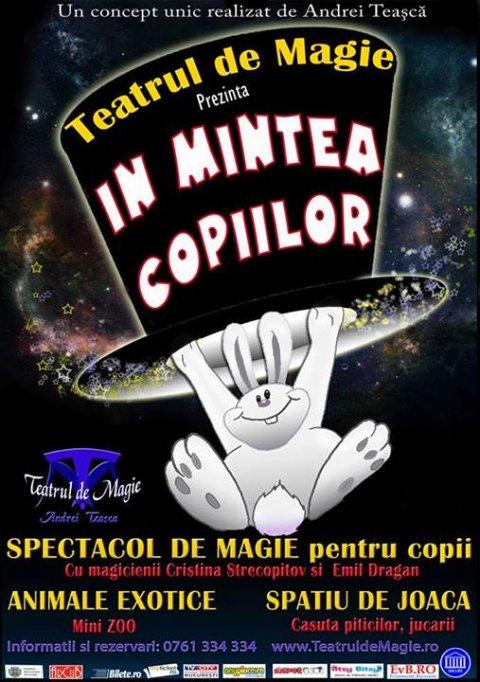 """Teatrul de Magie prezinta """"In mintea copiilor"""""""