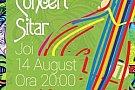 Concert Sitar