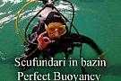 Ion Buncea's Diving School