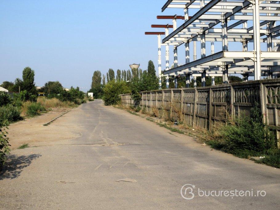 Strada Liniei