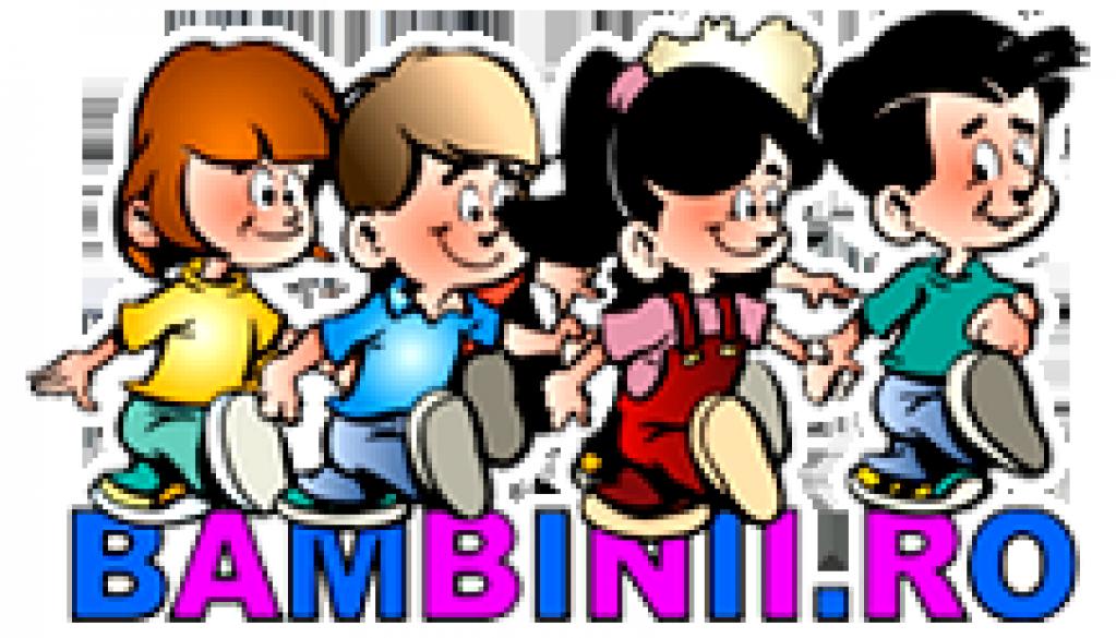 S.C. BAMBINII CRISDEL S.R.L.