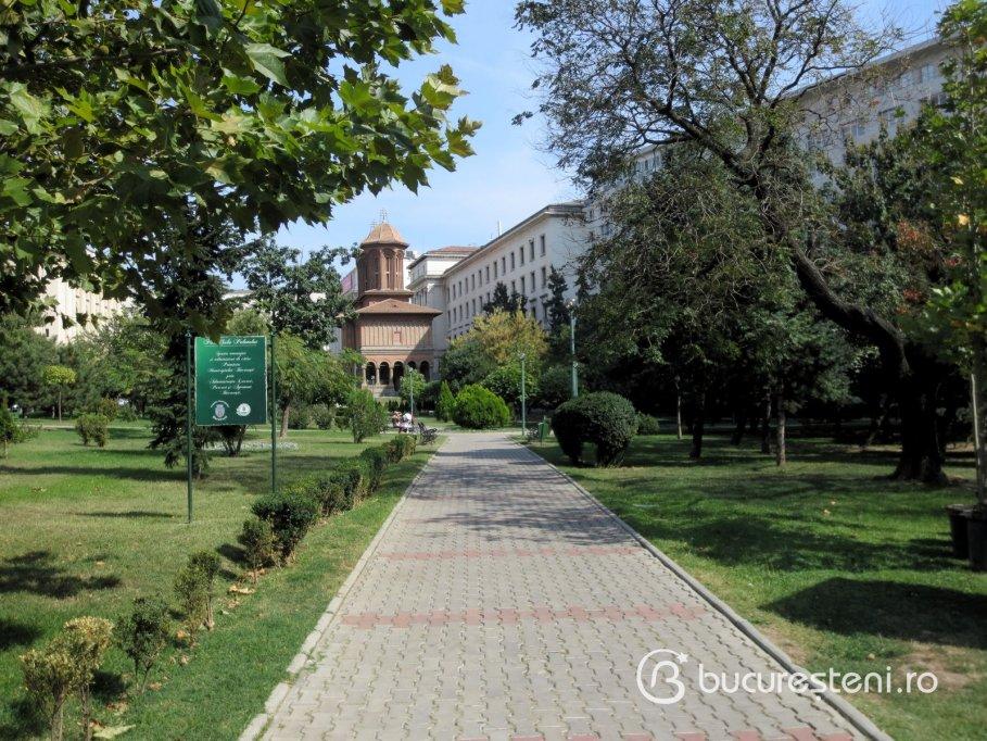Parcul Sala Palatului