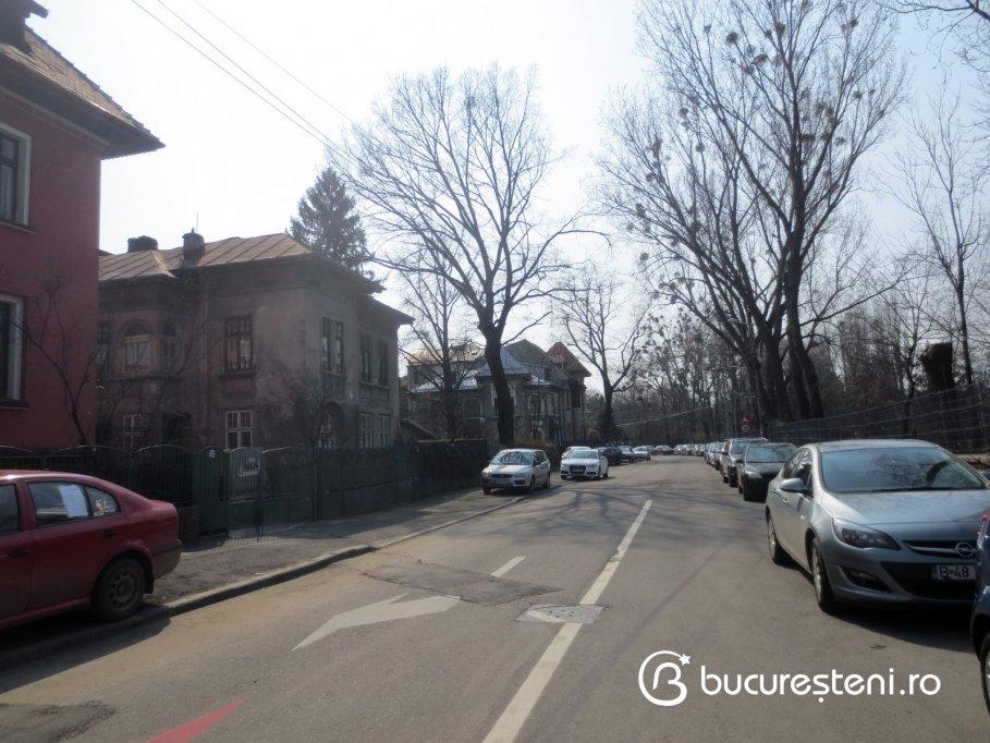 Strada Profesor Doctor Dimitrie Brandza