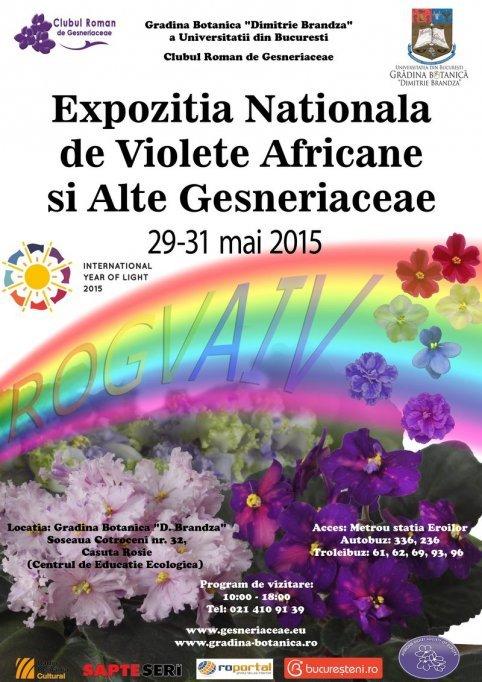 Expozitia Nationala de Violete Africane si alte Gesneriaceae