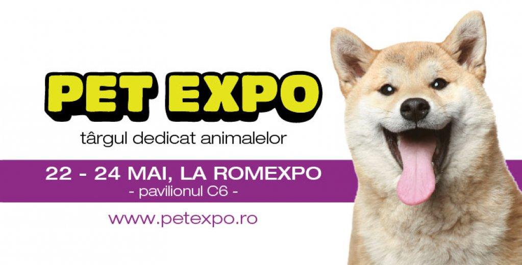 7 activităti de week-end cu copilul tau la Pet Expo