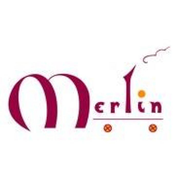 Merlin Books & Toys Store