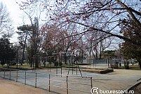 Loc de joaca - Parcul Eroilor