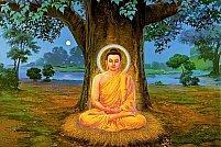 Introducere in invatatura budista: de la forta blandetii la fericirea eliberatoare (18-22 iulie)