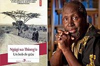 Un gigant al literaturii kenyene: Ngugi wa Thiong'o, Un bob de griu