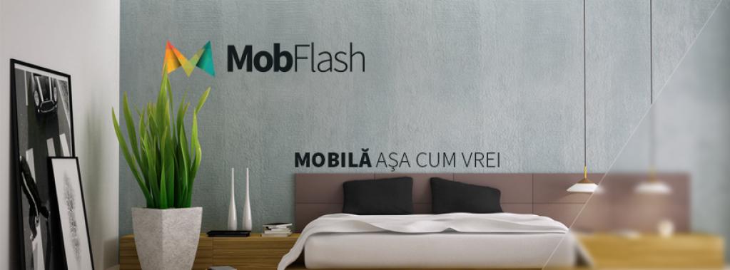 MobFlash Concept