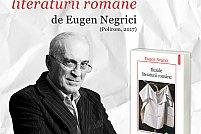 Volumul Iluziile literaturii romane